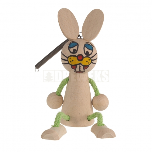 Rabbit on the spring