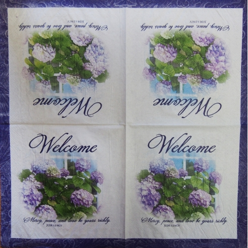 Napkin - welcome