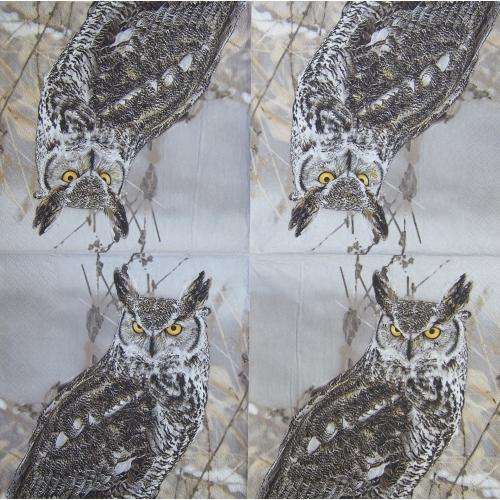 Napkin - an owl
