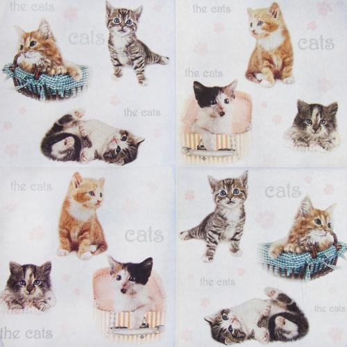 Napkin - cats