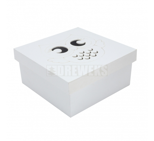 Cube white box with owl